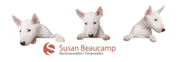 Tierrecht Sachsen-Anhalt